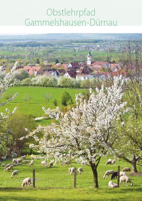 Obstlehrpfad_Duernau_Gammelshausen
